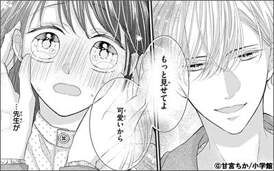 文豪に捧げる乙女【マイクロ】